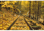 Old Railroad, Yankee Horse Ridge, Blue Ridge Parkway, Virginia