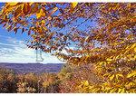 Cranberry Wilderness, Mill Point, West Virginia