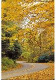 Blue Ridge Parkway, Buck Creek Area, North Carolina