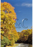 Julian Price Memorial Park, Blue Ridge Parkway, North Carolina