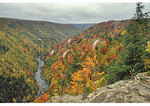 Canyon of the Blackwater River, Blackwater Falls State Park, Davis, West Virginia