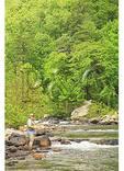 Fishing, Maury River, Goshen Pass Natural Area Preserve, Goshen, Virginia