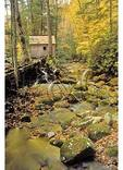 Reagan Mill, Great Smoky Mountains National Park, Tennessee