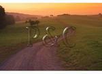 Farm Road at Dawn, Stover, Virginia