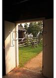 Barn Door, George Washington Birthplace National Monument, Montrose, Virginia