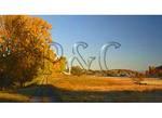 Farm Lane, Swoope, Shenandoah Valley, Virginia