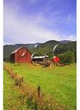 Painting Barn Roof, Hopeville, West Virginia