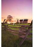 Sunset at Henry House, Manassas National Battlefield Park, Manassas, Virginia