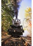 Western Maryland Scenic Railroad, Frostburg, Maryland