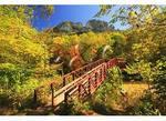 Foot Bridge, Seneca Rocks, West Virginia