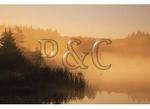 Sunrise, Spruce Knob Lake, Spruce Knob, Judy Gap, West Virginia