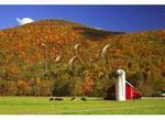 Farm, Franklin, West Virginia