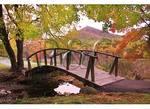 Bridge and Sharp Top, Peaks of Otter, Blue Ridge Parkway, Virginia