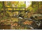 Falling Water Cascades, Blue Ridge Parkway, Virginia