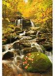 Along Apple Orchard Waterfall Trail, Blue Ridge Parkway, Virginia