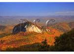 Looking Glass Rock, Blue Ridge Parkway, Brevard, North Carolina