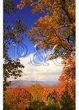 Near Waterrock Knob, Blue Ridge Parkway, Sylva, North Carolina