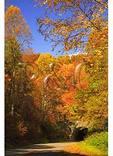 Tunnel Near Waterrock Knob, Blue Ridge Parkway, Sylva, North Carolina