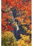 Raven Cliff Falls, Caesars Head State Park, Cleveland, South Carolina