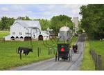 Mennonite Buggies in the Shenandoah Valley of Virginia