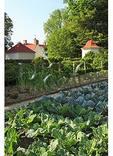 Upper Garden, George Washington's Mt. Vernon Estate & Gardens, Mt. Vernon, Virginia