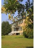 Golden Rain Tree, Prestwould Plantation, Clarksville, Virginia