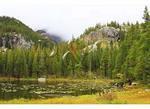 Nymph Lake, Rocky Mountain National Park, Estes Park, Colorado