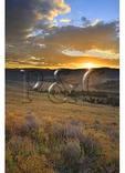Sunrise, Mount Washburn, Yellowstone National Park, Wyoming