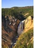 Lower Yellowstone Falls, Yellowstone National Park, Wyoming