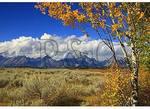 Mt. Moran, Grand Teton National Park, Wyoming