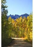 Biker, Owl Creek Pass, Ridgeway, Colorado