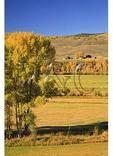 Ranch, Ohio Creek Road, Gunnison, Colorado