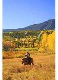Cowboy, Ohio Creek Pass, Gunnison, Colorado