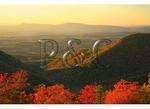 Blue Ridge Parkway, North of Buena Vista, Virginia