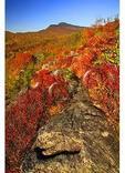 Grandfather Mountain seen from Flat Rock, Blue Ridge Parkway, North Carolina
