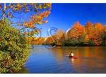 Kayaker, Price Lake, Julian Price Memorial Park, Blue Ridge Parkway, North Carolina