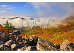 Blackrock Mountain, Adjacent to Appalachian Trail, Shenandoah National Park, Virginia