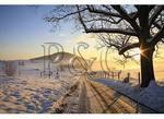 Sunrise, Dayton, Virginia