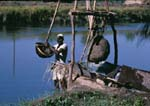 Egyptian farmer getting water from the Nile