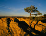 Sandstone Bluffs, Mt Taylor, El Malpais NM