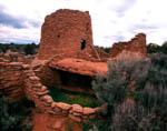 Frances Canyon Ruin, Navajo Pueblito