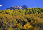 Autumn, Mount Sneffels Wildernes, Colorado