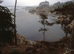 Bluefish Cove, Point Lobos State Reserve
