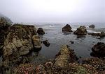 Shoreline, Point Lobos State Reserve