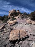 Adolfo Canyon Site Pueblito, San Juan Basin, New Mexico
