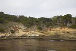 Cypress Cove, Point Lobos State Reserve