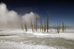 Winter, Yellowstone National Park