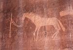 Navajo Horse, Bluff, Utah