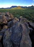 Hohokam Petroglyph, Signal Hill, Saguaro National Park