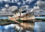 Abandoned Fishing Boat, Tomales Bay